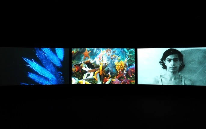 John Akomfrah, Vertigo Sea 2015, Three channel colour video installation, 7.1 sound, 48 minutes 30 seconds
